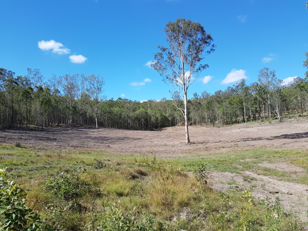 LAND CLEARING, PROPERTY TRACKS AND FENCE LINES
